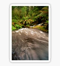 Rainforest Stream, The Otways Sticker
