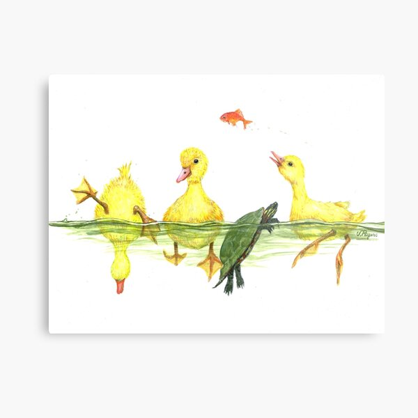 My Ducks in a Row Metal Print