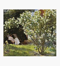 Severin Roesen - Roses. Marie Kroyer Seated In The Deckchair In The Garden. Still life with flowers: bouquet, flowers, bumblebee , carnations, peonies, roses, tulips, marigolds, life, garden, blossom Photographic Print