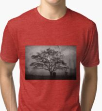 Landscape On Adobe Wall BW Tri-blend T-Shirt
