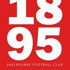 1895 - SHELBOURNE FOOTBALL CLUB  by 1895Trust