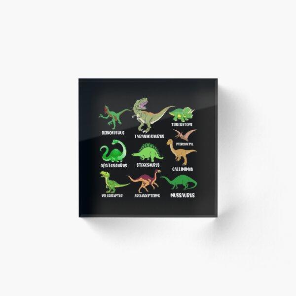 Types Of Dinosaurs - Dino Identification Graphic Acrylic Block