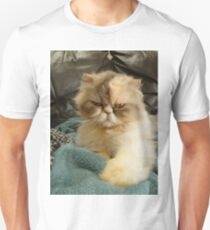 Do I look Amused? Unisex T-Shirt