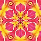 Pink Sunshine I by Scott Mitchell