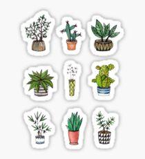 home plants Sticker