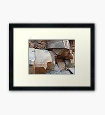 Rock Texture Framed Print