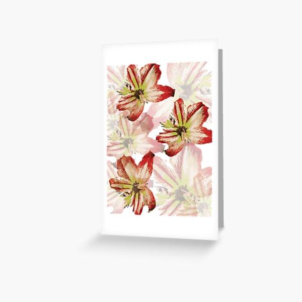 Amaryllis Pattern Greeting Card