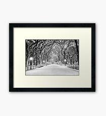Cental Park New York, NY  winter scene Framed Print