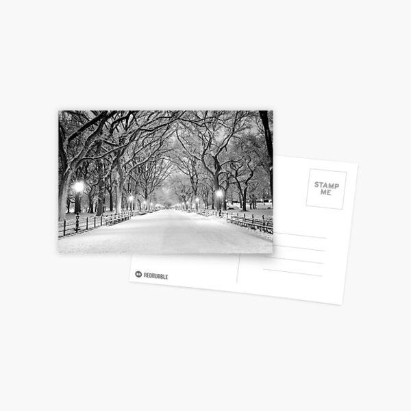 Cental Park New York, NY  winter scene Postcard