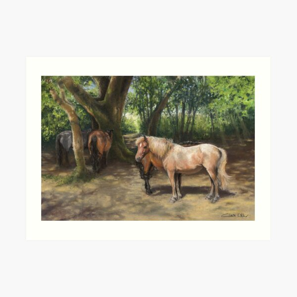 Shading in a New Forest Copse Art Print