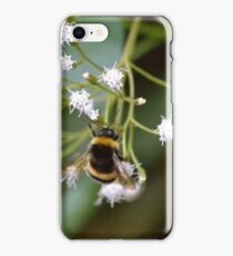 Bee Bumble Bee iPhone Case/Skin