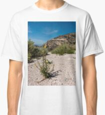 Wildflowers Along Sky Island Scenic Byway to Mt. Lemmon Classic T-Shirt