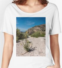 Wildflowers Along Sky Island Scenic Byway to Mt. Lemmon Women's Relaxed Fit T-Shirt
