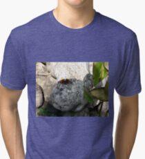 mothra Tri-blend T-Shirt