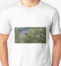 Bald eagle (Haliaeetus leucocephalus Unisex T-Shirt