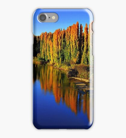 Poplars along the Corridor iPhone Case/Skin