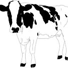 Cow by Colin Bentham