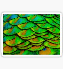Peacock feather armour Sticker