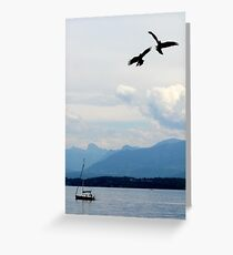 Birds - fight and flight Greeting Card