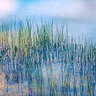 Whisper of the Reeds by John Rivera