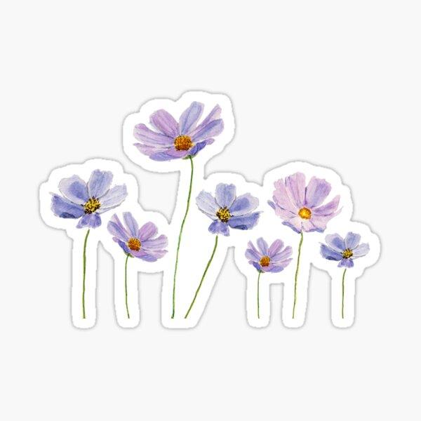 purple cosmos flowers watercolor Sticker