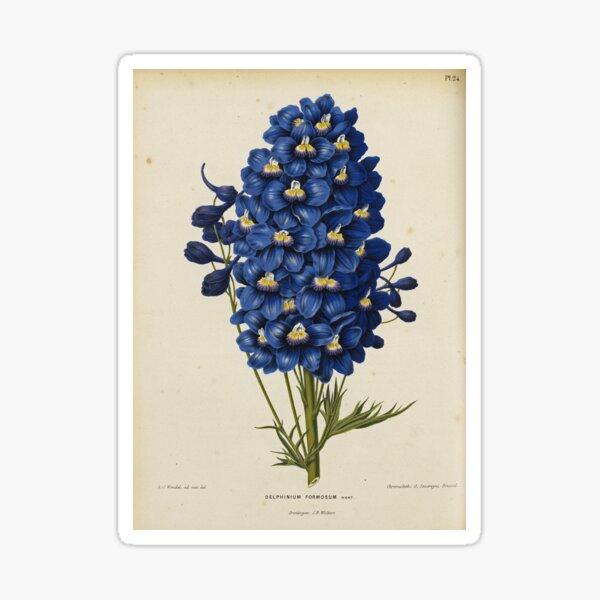 Blue Delphinium Print Sticker