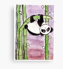 Silly Panda Canvas Print