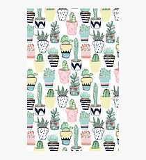 Cute Cacti in Pots Photographic Print