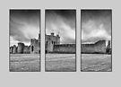 Triptych Trim Castle by Martina Fagan