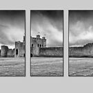 Triptych Trim Castle by Martina Fagan