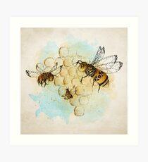 The Hive Art Print