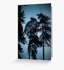 Dark Skies Greeting Card