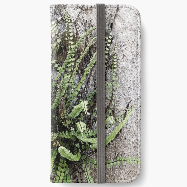 French Stone Wall Fern iPhone Wallet