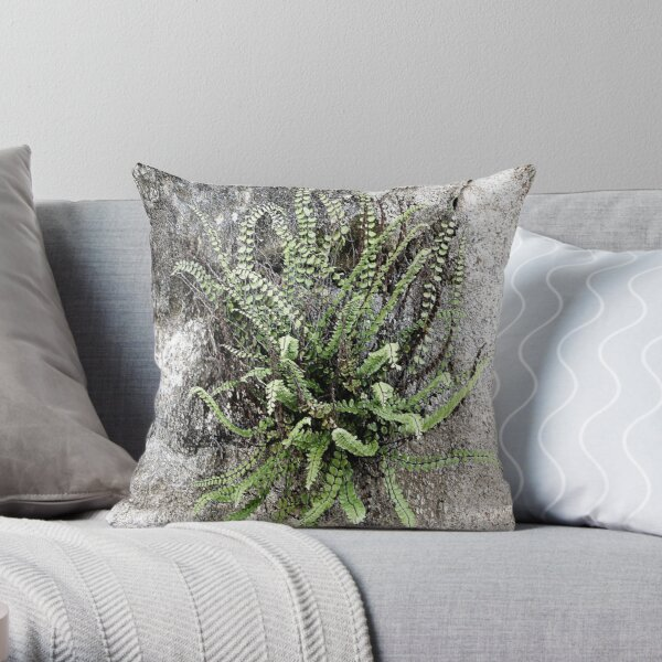 French Stone Wall Fern Throw Pillow