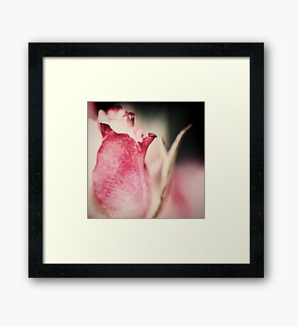 ~ we only part to meet again ~ Framed Print