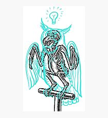 Skeleton of an Owl, with ghostly overlay Photographic Print