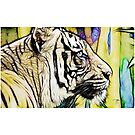 Tiger numero quatro (smaller) by eltdesigns