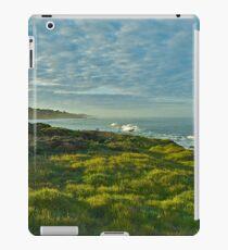 Pacific Coast Sunrise - Cambria, California iPad Case/Skin
