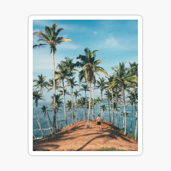 MAN STANDING ON BEACH AND PALM TREES Sticker