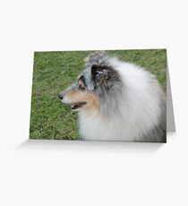 Princess Gracie Greeting Card