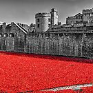 Sea Of Red by Graham Prentice