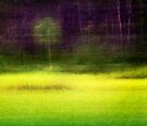 Mitchell Park ~ the impressionist's view II by Adriana Glackin