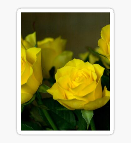 Yellow roses, symbol of friendship and joy Sticker