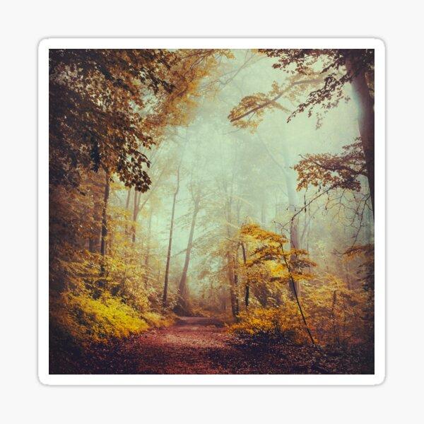 silent forest Sticker