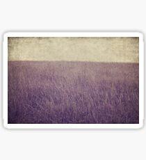 Purple field Sticker