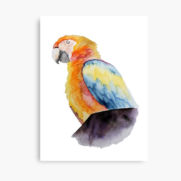 Parrot On A Chimney Canvas Print