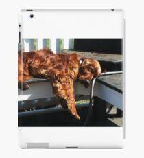 Irish Setter  iPad Case/Skin