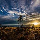 Sunset 30 by Richard Bozarth