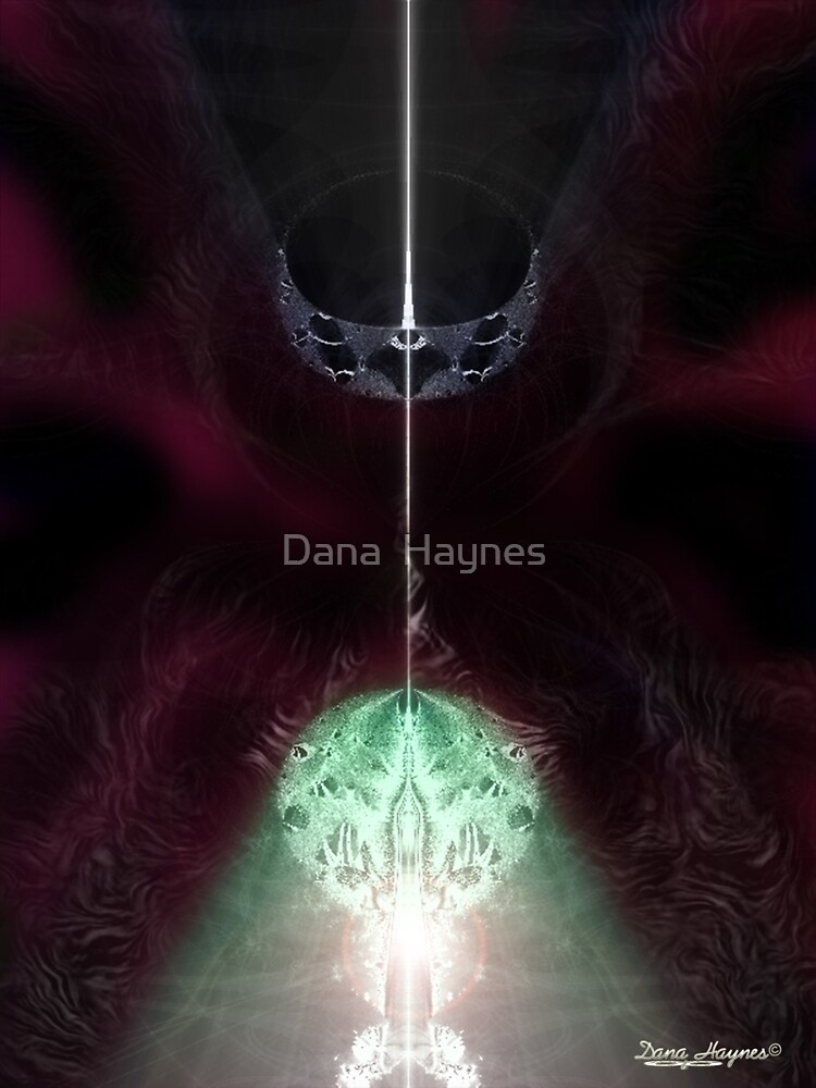 Real Diamonds Not For Sale by Dana  Haynes