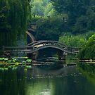 Hangzhou (China) by Julien Tordjman